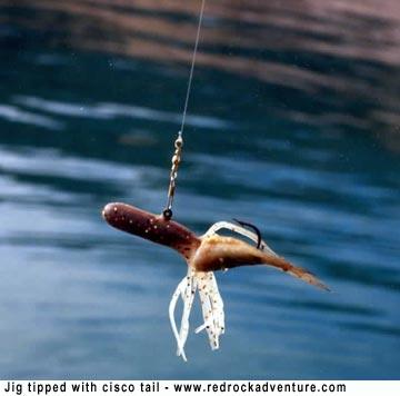tips on fishing bear lake in utah, Fly Fishing Bait